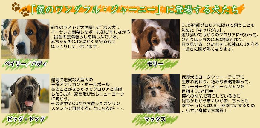 僕のワンダフル・ジャーニーに登場する犬たち