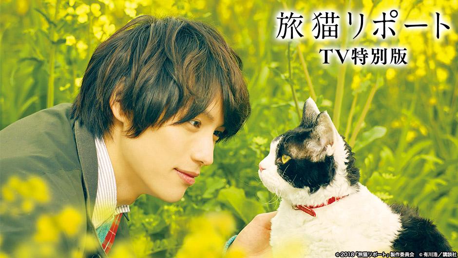 旅猫リポート TV特別版